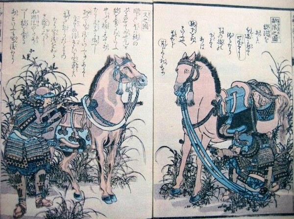 Samurai horse pistol (2).jpg