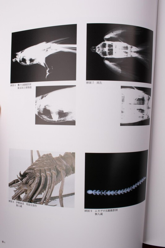 book-505.jpg