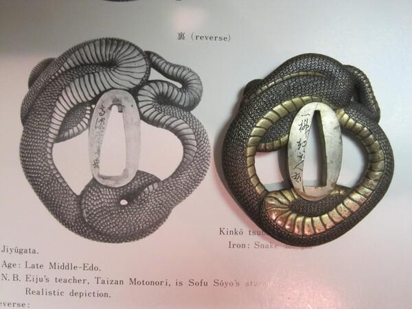 Snake comparison 1.JPG