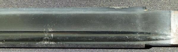 P1150586 (Large).JPG